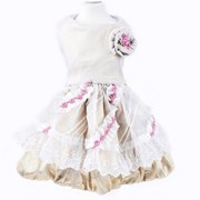 Fashion Pet Supplies Rose Embellished Lace Princess Dress Puppy Clothing