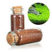 Plant Seed Aquarium Fish Tank Plants Prospects Grass Seed Grass Landscaping Decoration